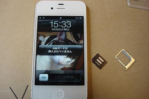 DSC00733-s.JPG
